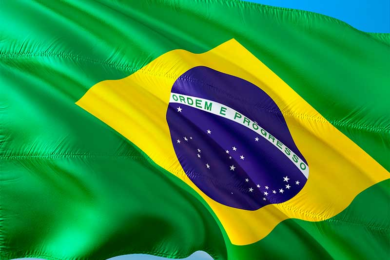 BRIC I. Brasil, el gigante feliz